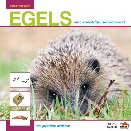 Egels, onze vriendelijke tuinbezoekers