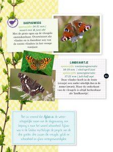 Tuindieren - vlinders
